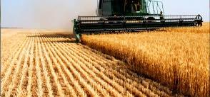 Oli lubrificanti per trattori e mezzi agricoli
